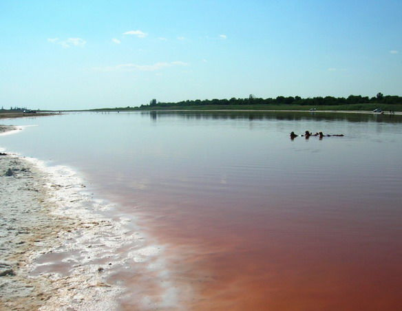 Фотографии Солёное озеро Тинаки неподалёку от Астрахани (16.07.08.
