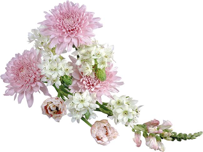 Обои Букеты Цветы Фото 292406