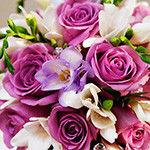 Розы картинки
