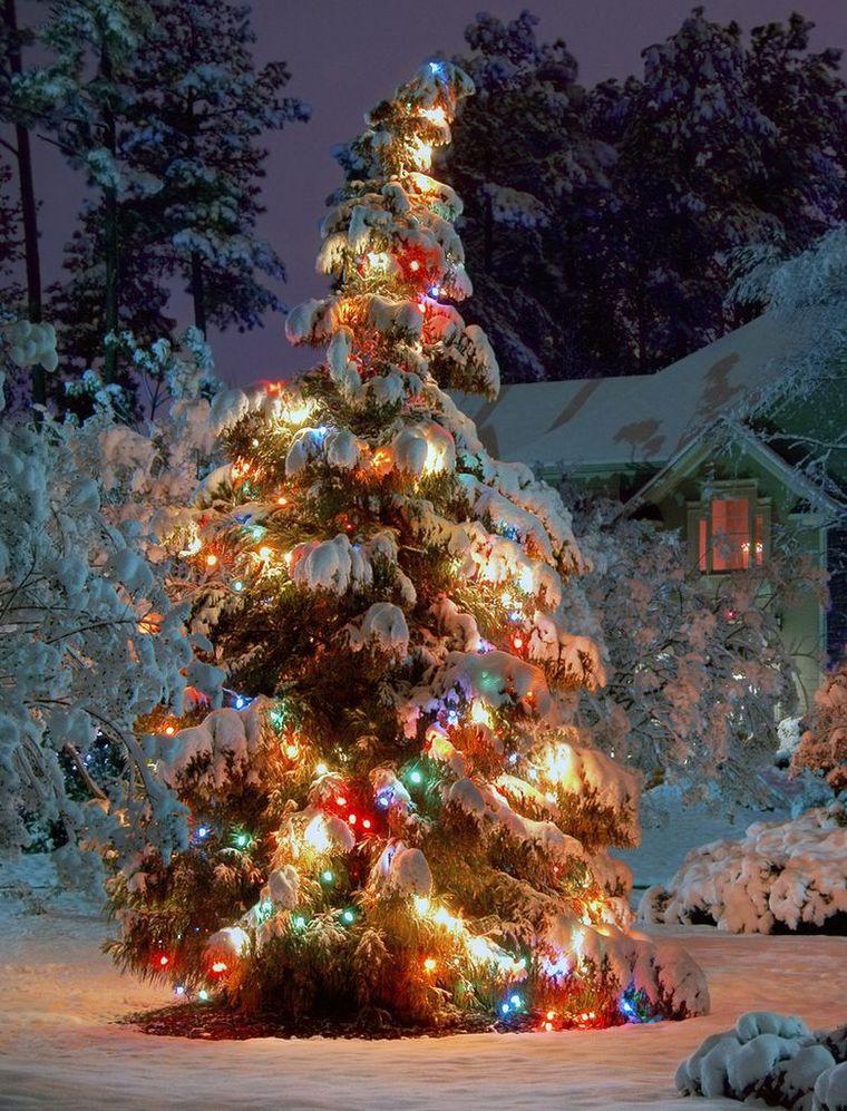 секреты фото елки новогодней на телефон того как ракету
