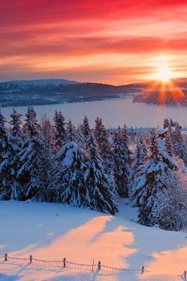 Stunning Views: Norwegian Sunrise