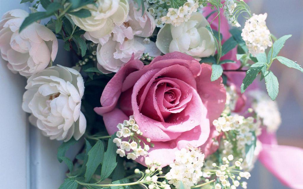"""Скачать 960x800 картинку """"Flowers"""" для мобильного телефона. Цветы"""