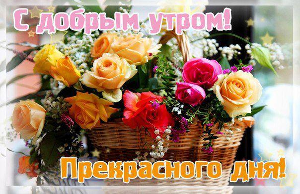 https://cs8.livemaster.ru/storage/29/6c/a8f41bd93ada8d7ba96c8034e47q.jpg