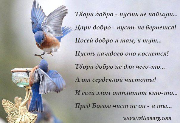 Стих творите добро