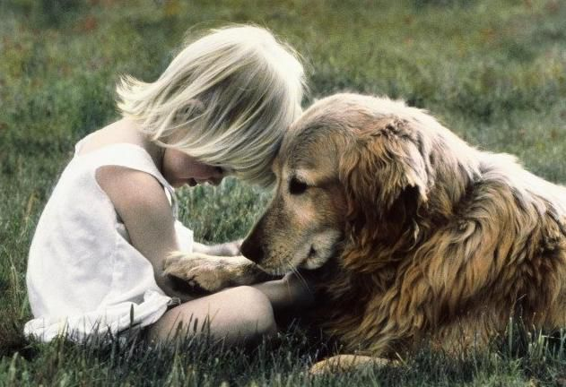 Картинки по запросу человек и собака