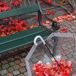Листья смайлик