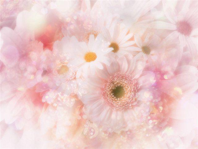 Incredible Amazing Flower Art