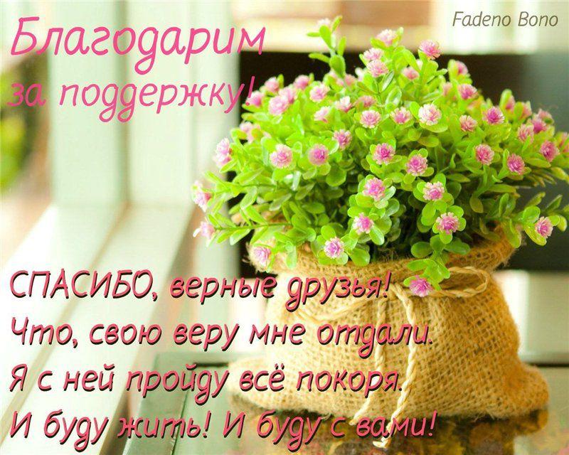 Помощь в работе открытки, букетом полевых цветов