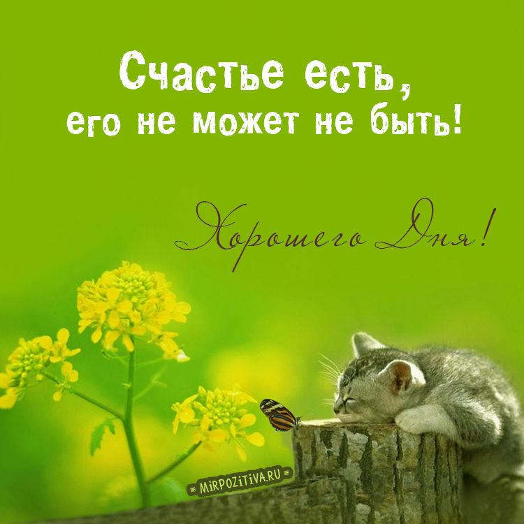 Картинки по запросу хорошего дня картинка зеленая