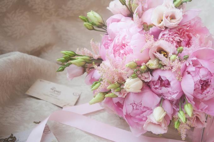 Цветы пионы самые красивые