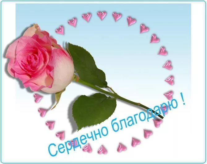 Поздравления день, открытка спасибо аня