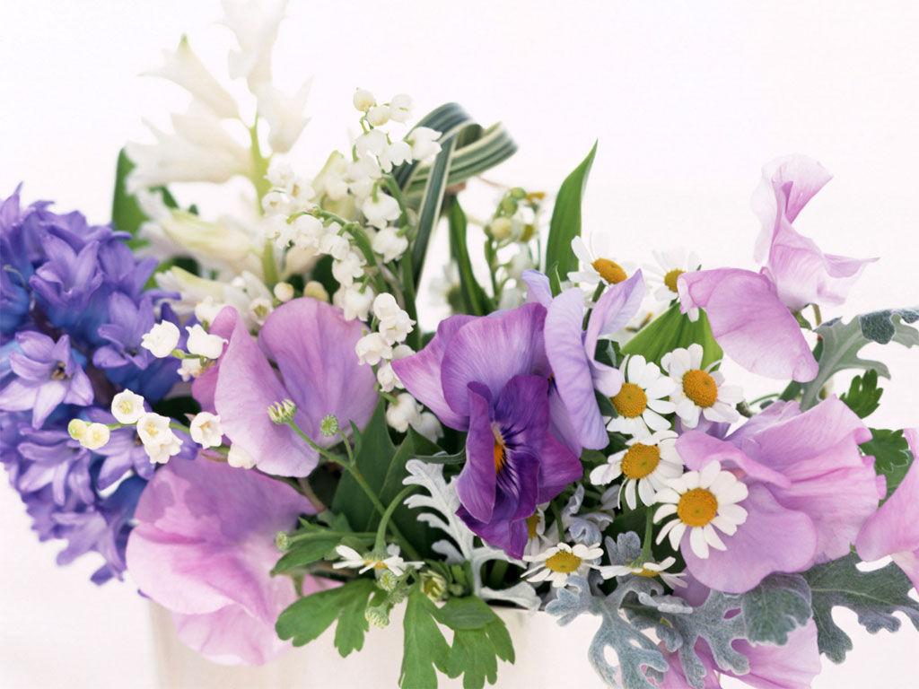 Картинки по запросу поздравляю цветы