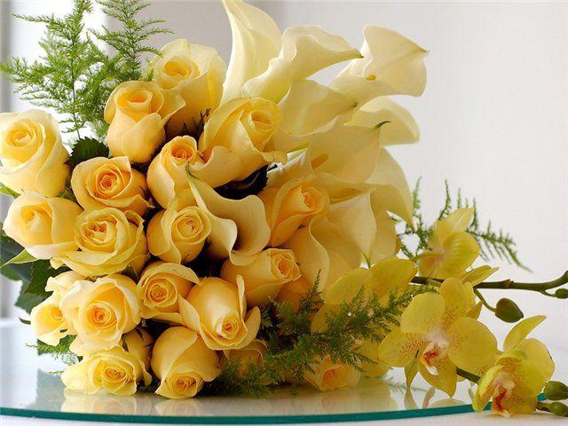 Скачивание изображения: праздник, белый, розы 338974 / Разрешение: original / Раздел: Цветы / HallPic.ru