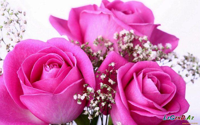Праздничные статусы для соцсетей про 8 Марта - смешно и романтично