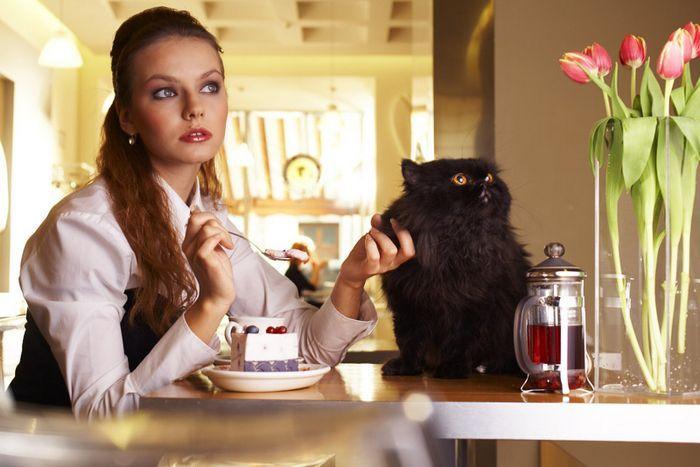 Можно привести несколько запретов на употребление чая. Не пейте чай. - 6 Февраля 2014 - Blog - Semsoft