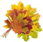 Осень смайлик