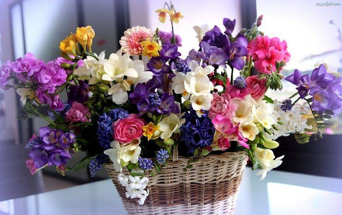 красивые, корзинка, букет, разные, цветы, ранункулюс обои на рабочий стол 1680 х 1050, фото 55977